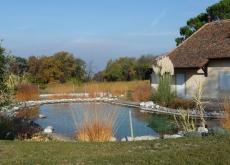 paysagiste thonon les bains bassin baignade